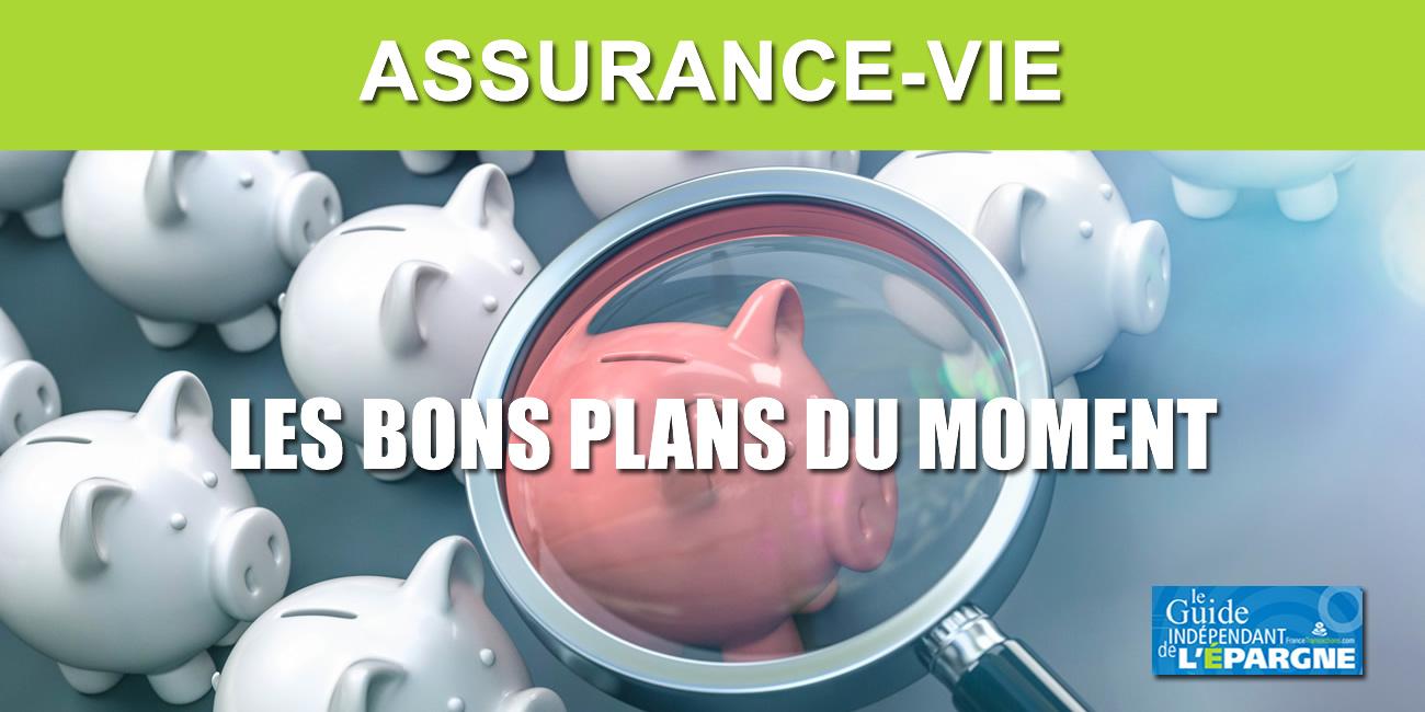 Assurance-vie : meilleures opportunités en Août 2020