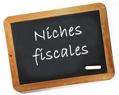 Impôts / niches fiscales : plafonnement de la réduction d'impôt à 10000 €