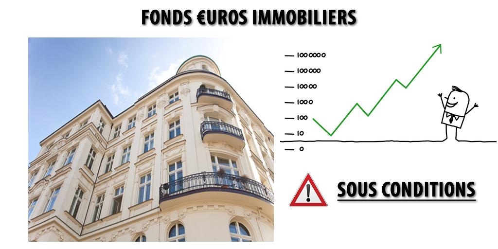 Fonds euros : misez sur les supports en euros immobilier !