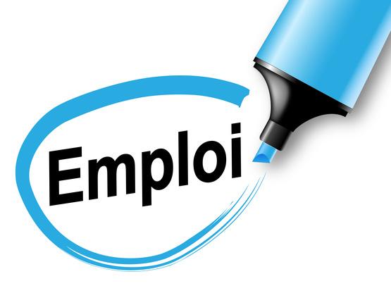 Emploi : le taux d'emploi en France est de 69.5% en 2013