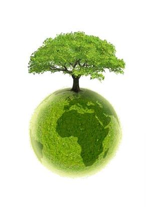 Obligations d'Etat vertes : la France émet des Green Bonds en 1ère mondiale