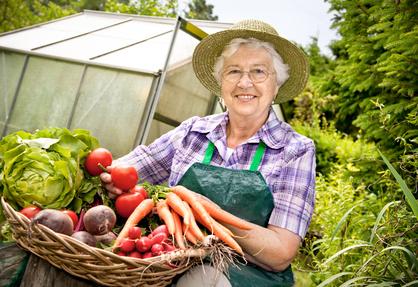 Prix des fruits et légumes en 2018 : une envolée des prix peu compréhensible