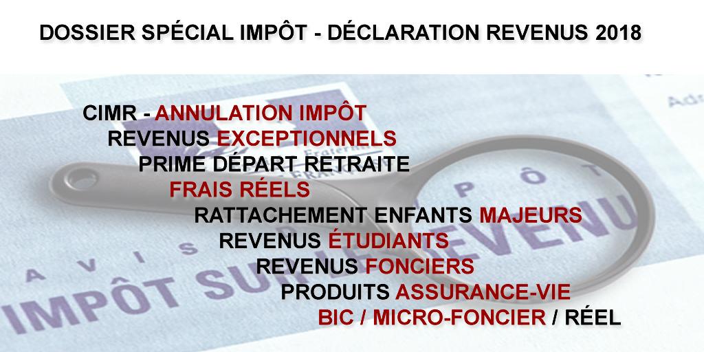 Dossier spécial impôt 2019 : déclaration des revenus 2018 & année blanche fiscale