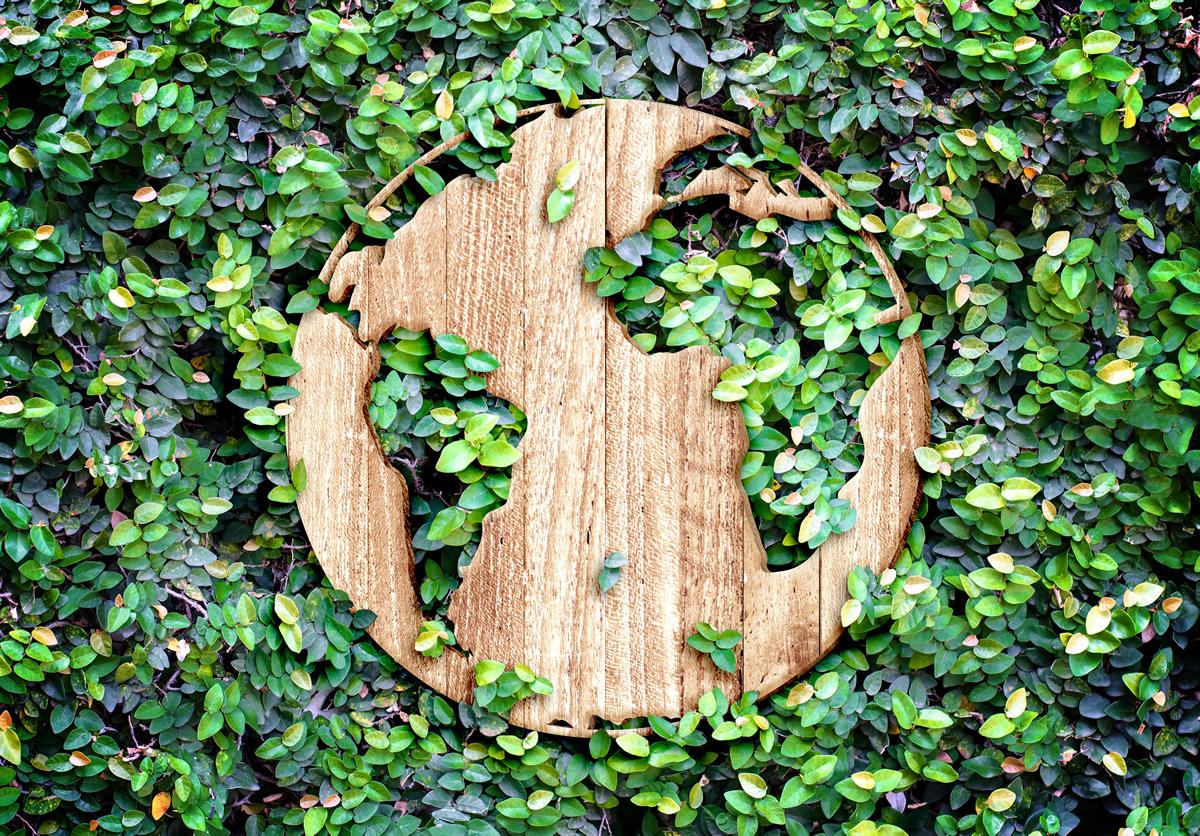 Finance verte : de nouveaux engagements pris pour atteindre la neutralité carbone en 2050