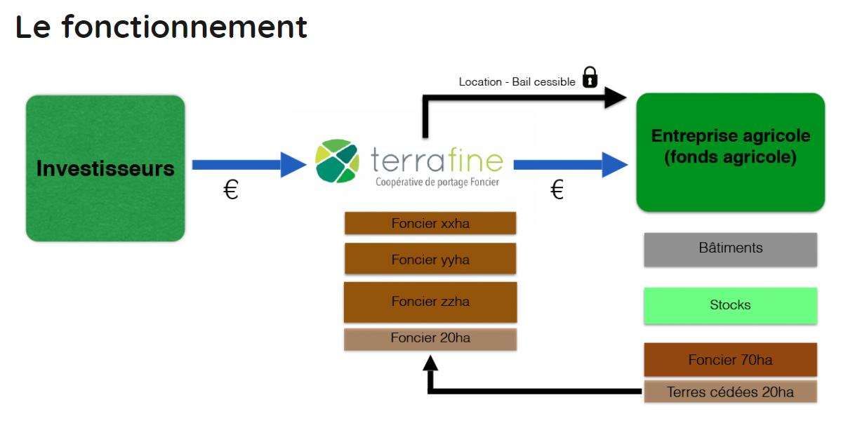 TERRAFINE: fonctionnement du système financier