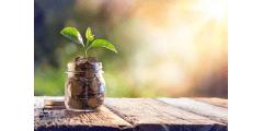 Placements responsables : comment donner plus de sens à son épargne ?