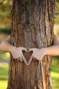 Placements forestiers : Bientôt une classe d'actifs à part entière ?