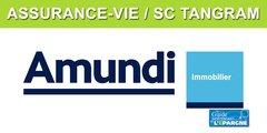 Assurance-vie : La SC Tangram désormais disponible sur de multiples contrats en ligne
