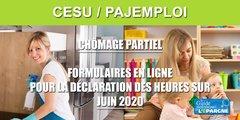 Chômage partiel CESU et PAJEMPLOI : les formulaires pour le mois de JUIN sont en ligne