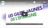 L'Afer : les gilets jaunes de l'épargne, vraiment ? (vidéo)