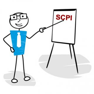 TOP 7 des risques portant sur les SCPI