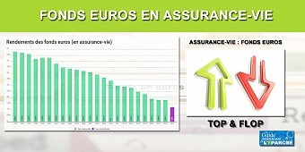 Fonds euros : les meilleurs et les pires rendements (top/flop)
