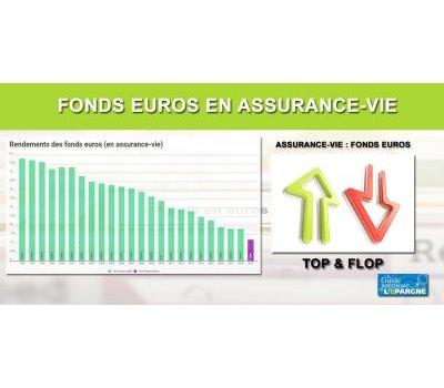 Fonds euros 2019 : les meilleurs et les pires rendements (top/flop)