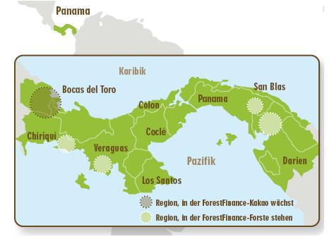 des plantations d'arbres au Panama